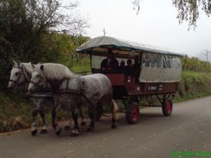 Planwagen 1